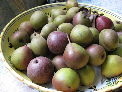 bartlett-pears