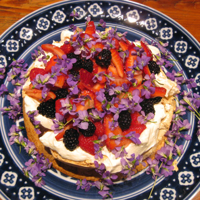 pavlova-full